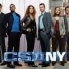 CSI-NY