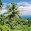 Pápua Új-Gínea – egy ország, melybe minden belefér