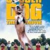 A kutya rúgja meg a mozifilm