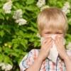 Homeopátiával az allergia ellen