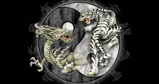 ying-and-yang-tiger