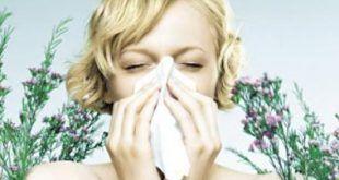 Nagy_Pxcs_allergia_0