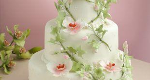 8ed71387fa fórumok: tortacsodák házilag esküvői tortacsodák online esküvői tortacsodák  online részek esküvői tortacsodák sorozat online esküvői tortacsodák  tortacsodák ...